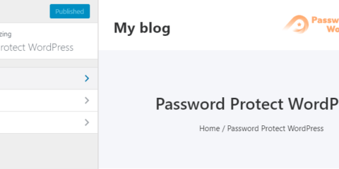 Password Protect WordPress Lite: Customize password form & error message using WordPress customizer