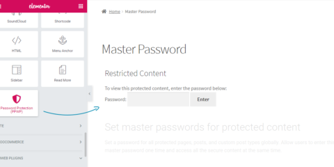 Password Protect WordPress Lite: Elementor Integration