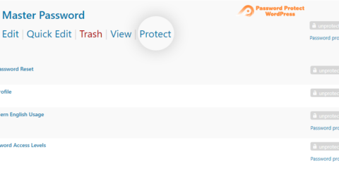 Password Protect WordPress Pro: Password Protect Button
