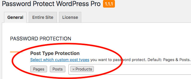 ppwp-password-protect-custom-post-type