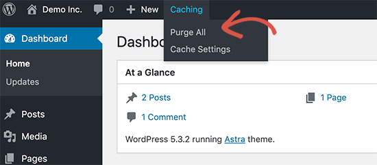 Purge Cache WordPress bluehost