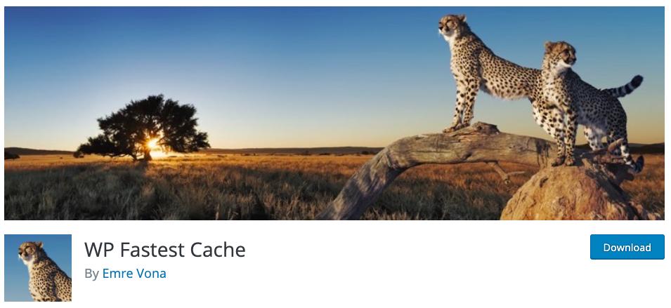 Fastest cache