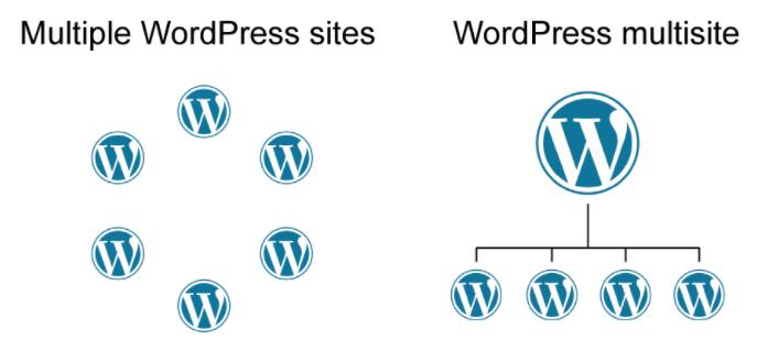 WordPress multisite and single site