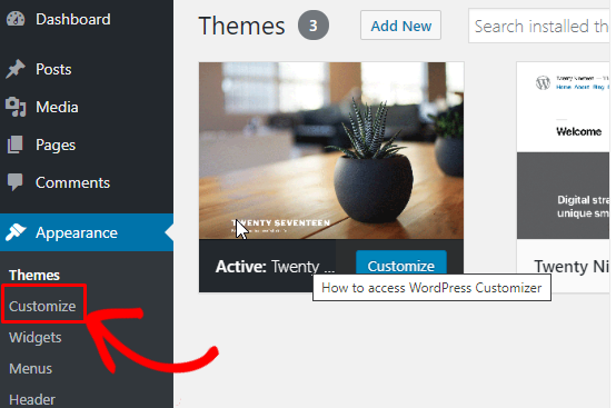 How to add extra sections to WordPress Customizer