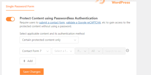 Passwordless Authentication: Grant Access to Protected Content via Contact Form