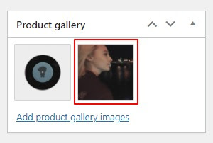 Choose thumnail images for WooCommerce featured videos